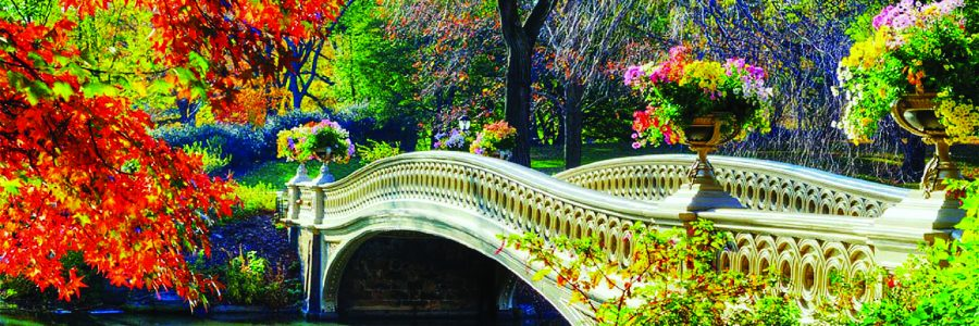 Romantic Bridge Autumn Flowers Attractions Dreams Photography Creative Pre Fall Seasons Outdoor Trees Bridges Architecture Gardening Love Gallery