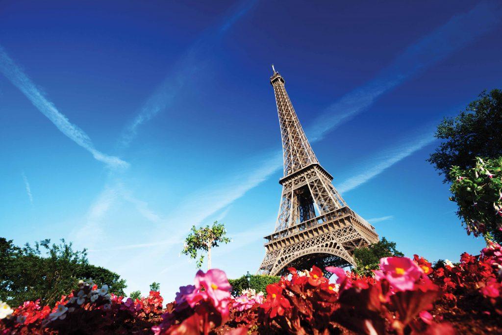 Cities_____Flowers_near_the_Eiffel_tower_088508_light