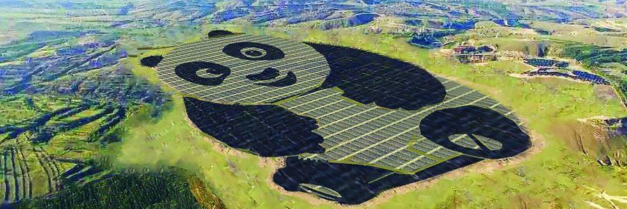 209714_qXdMuHnavg_panda_green_energy